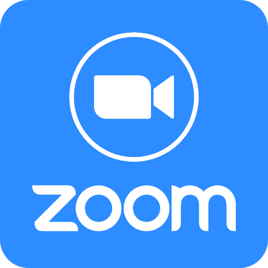 Live Zoom Lessons